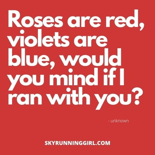 roses are red violets are blue skyrunning girl skyloving trail running pick up lines ultra female runners