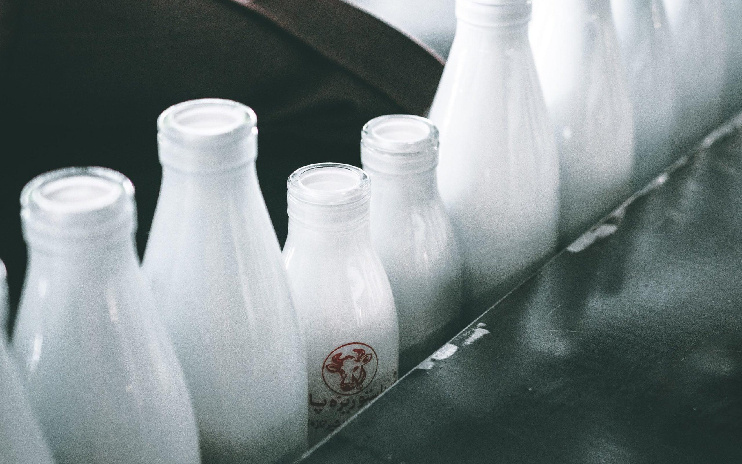 milk dairy butter